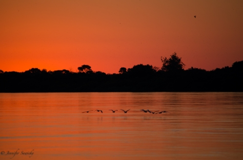 Sunset on the Zambezi River, April 2013