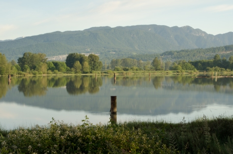Coquitlam in the distance, June 2013 1/10, f22, ISO100, 55mm