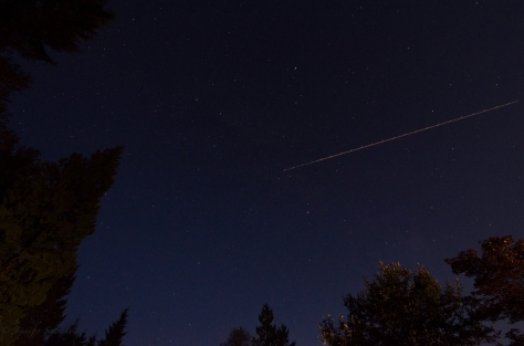 I was taking interval photos to practice star trails, and while this one was quite boring, I did like this one photo.  I don't know if that is a plane or a shooting star going across the top o the photo.  September 2013