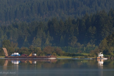 A tug boat drags a barge filled with supplies up the Pitt River, heading towards the logging camp at the end of Pitt Lake. 1/800sec, f7.1, ISO720