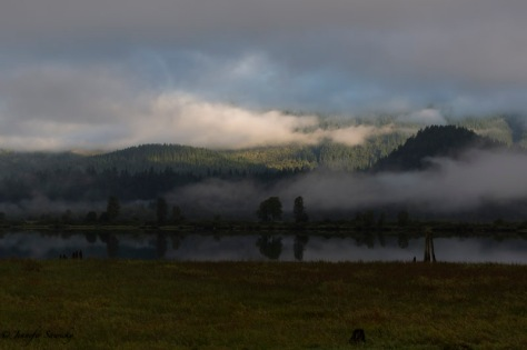 The early morning fog parting to reveal the blue sky beyond. 1/200sec, f8.0, ISO500