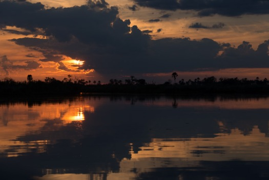 A spectacular sunset over the delta, taken while on a sundowner boat trip.