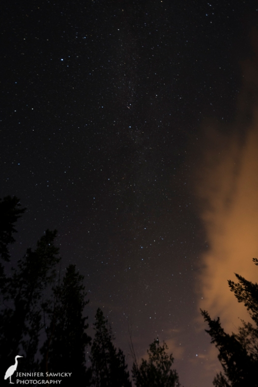 The start of a meteor and also getting a glimpse of the milky way.  I should have adjusted my ISO by this point, but I was more interested in watching the sky and drinking my wine :)