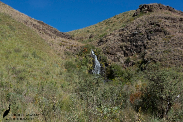 """One of several waterfall seen on the journey.  One of them ran right over the road, and we went through about 12"""" of water!"""