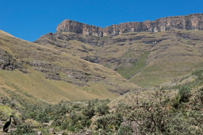 Table Mountain isn't the only flat topped mountain in South Africa.