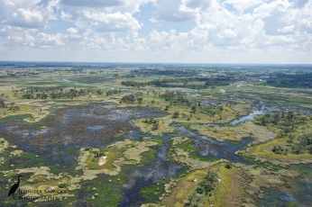 The beautiful Okavango Delta from the air seemed a fitting photo for the Wordpress weekly challenge - Earth. Botswana, April 2015